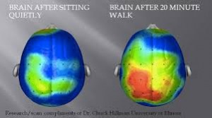 Brainwalk